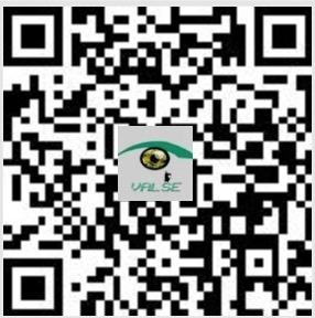 VALSE微信